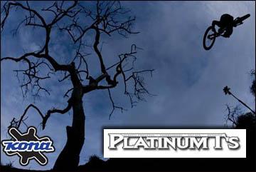 B2B: Platinum T's