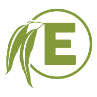 Eucalyptus Creative