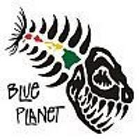 Blue Planet  Surf